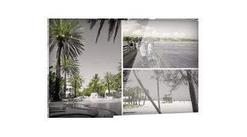Palmen Strand Collage